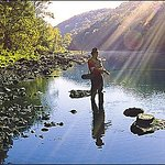 Located 7 miles from great trout fishing on the Little Red River