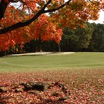 Fall Golf Course view