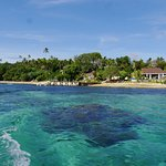 Photo of Reef Resort