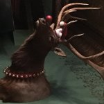 Mr Moose ready for the Holidays. :) - Near the bar.