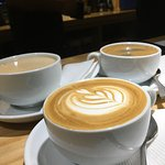 Coffee bloom照片