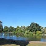 Verulamium Park St. Albans