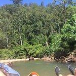 Rainforest near our exit point