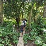 Adventures in Paradise Fiji Photo