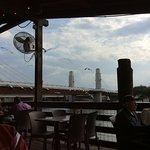 Seagulls while eating on deck over Waco River