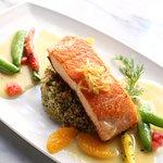 Roasted Organic Salmon, Quinoa, Sugar Snaps, Orange Wedge