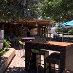 Ficus outdoor restaurant