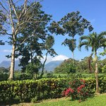 View of Volcán Arenal from the hotel
