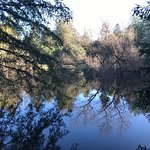 Vistas, redwoods and camping on a pond