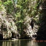Photo of Than Bok Khorani National Park