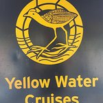 Yellow Water Cruises