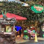 Foto de Rainforest Cafe