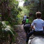 Taking the boys (5 & 8) riding on their own horses!
