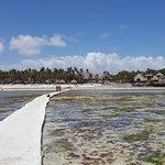 Bilde fra Karafuu Beach Resort and Spa