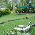 the hammock area