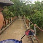 Mekong Delta Bridge