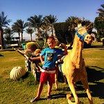 Photo of Royal Rojana Resort
