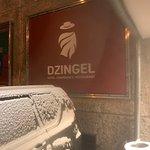 Photo of Dzingel