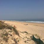 beach Barril