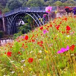 Ironbridge in Summer