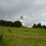 Photo of Katiki Point Lighthouse
