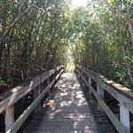 Take a walk down our mile-long trail