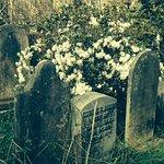 Unitarian churchyard lush with flowers
