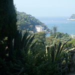 Photo of Exotic Garden (Jardin Exotique)