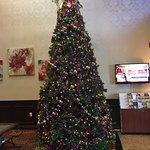 Mardi Gras tree in lobby