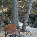 After a short easy walk, you are greeted with a gentle little fall and a cozy place to sit a spe