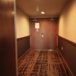 Hallway which leads to the Penthouse suite double doors, equipped with a doorbell!