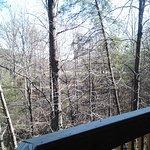 Foto di Wyndham Resort at Fairfield Mountains