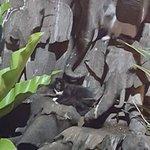Ruen Thai restauarnt: Wood Carving at the Entrance