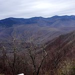 Foto de Mount Mitchell State Park