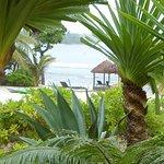 Photo de Nasama Resort