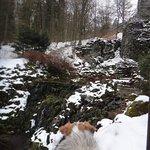 Bergpark Foto