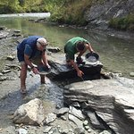 Panning for gold -maybe next time !!