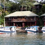 Photo of Bastianos Lembeh Dive Resort