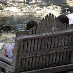 Foto di Big Sur River Inn