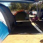 Photo de Parque Campismo Ria Formosa
