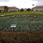 Stanford University Foto