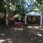 Casajungla Hostel Foto