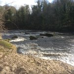 Lower Aysgarth falls