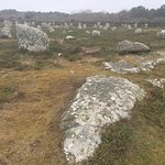 Photo de Megaliths of Carnac