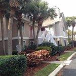 Photo de Residence Inn St. Petersburg Clearwater