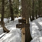 Sandia Trails
