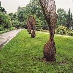 Botanical Gardens (Botanisk Hage og Museum) Photo