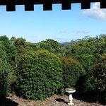 Avocado Grove B&B Image