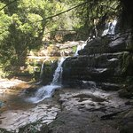 Photo de Liffey Falls