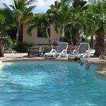 Bridanda Apartments Bonaire Foto